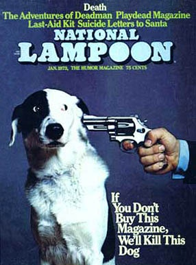"Why I no longer have ""lampoon"" in my vocabulary."