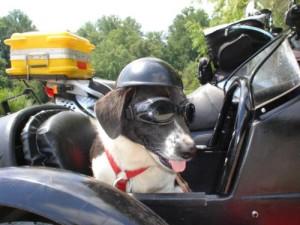 Mr. Sidecar..